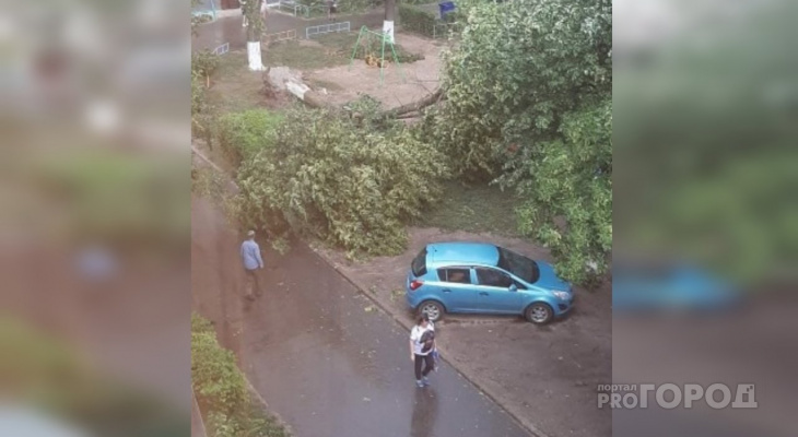 Последствия грозы в Чебоксарах и Новочебоксарске: от ветра улетел прицеп, упали деревья