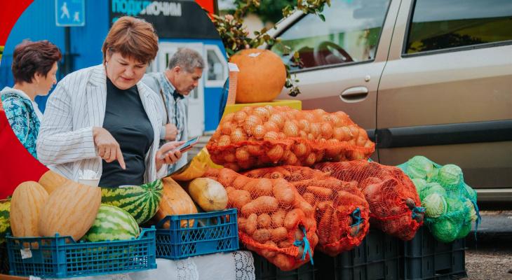 Чебоксарцам предлагают запастись овощами по низким ценам: морковь по 30, кабачки по 10 рублей