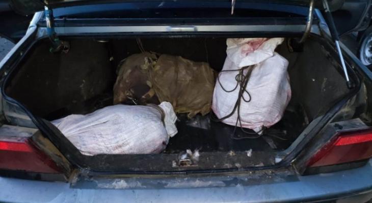 В Чувашии поймали четырех человек с ружьями: их подозревают в преступлении