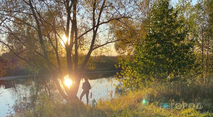 После заморозков и дождей в Чувашию придет настоящая золотая осень