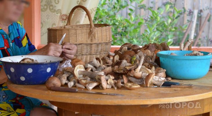 В скорую помощь обратилось 13 жителей Чувашии, которые поели грибов