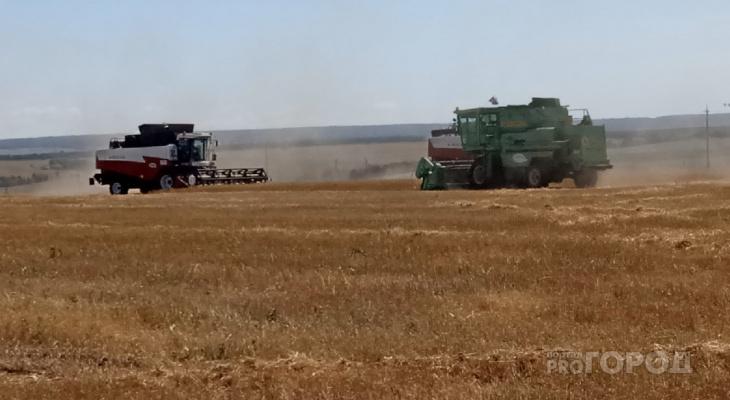 В Чувашии отменили режим ЧС, связанный с гибелью урожая
